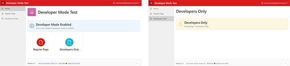 Developer mode enabled