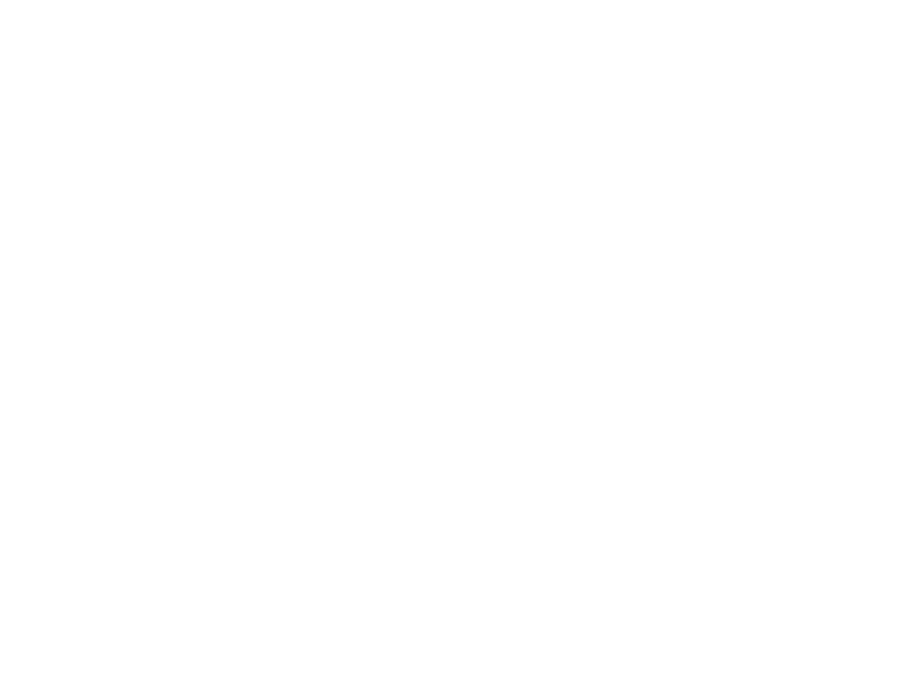 DSP-Logo-white-no-text (002)